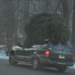 christmas-tree-eats-car