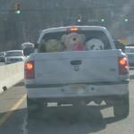 stuffed-animals-truck