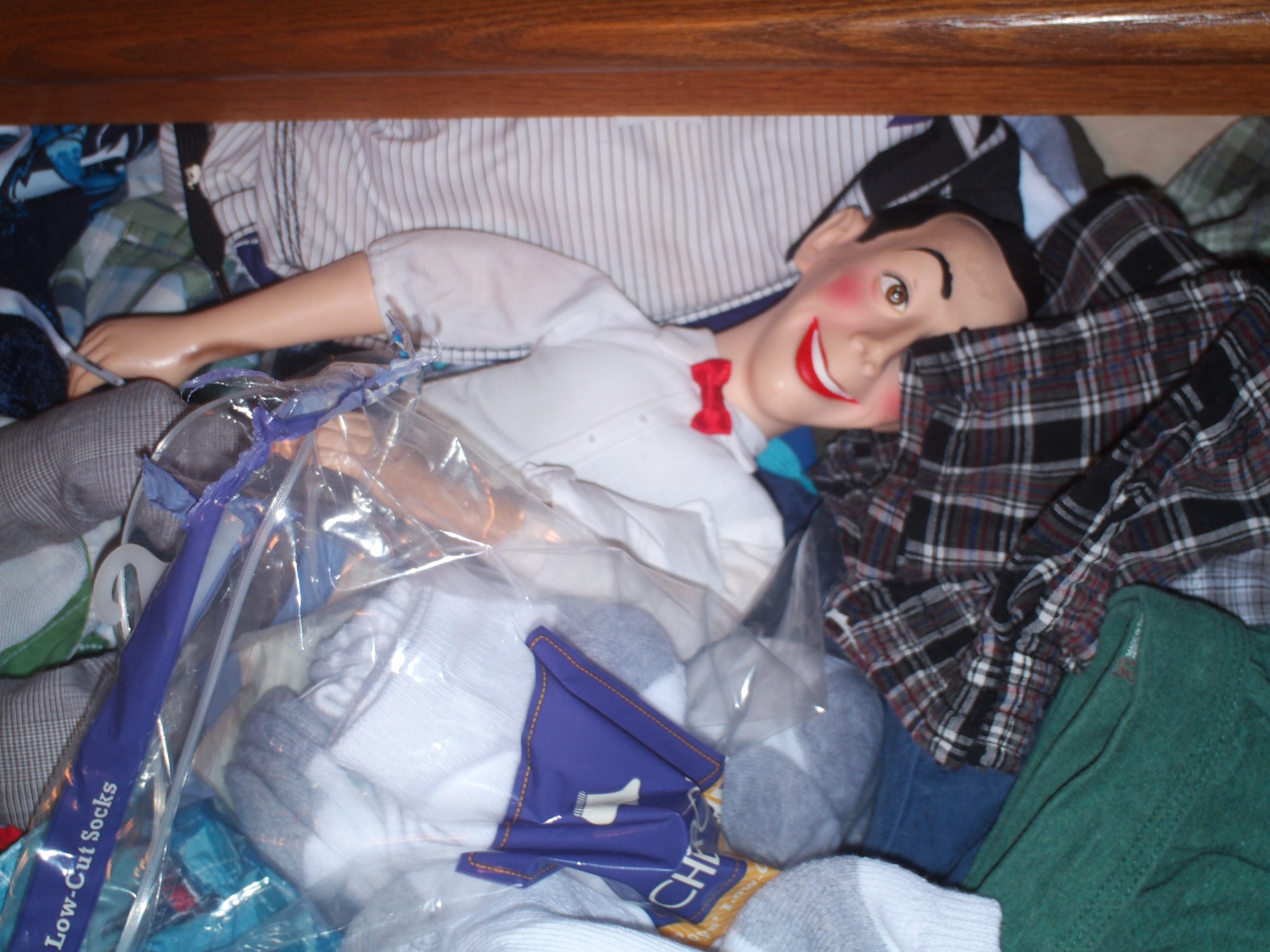 pee-wee in a drawer