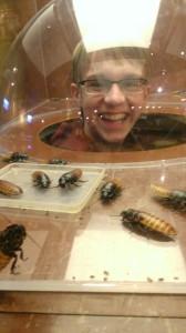 Ripley's bugs