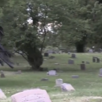 See Them Run: Epic Halloween Prank