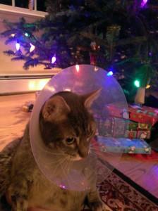 Benny Christmas